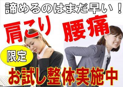 肩こり・腰痛・整体・整骨院・京都